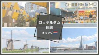 ロッテルダム観光見どころ