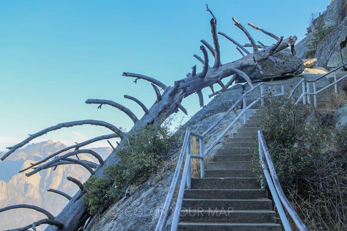 セコイア国立公園のMoro Rock(モロ・ロック)へ登る石段