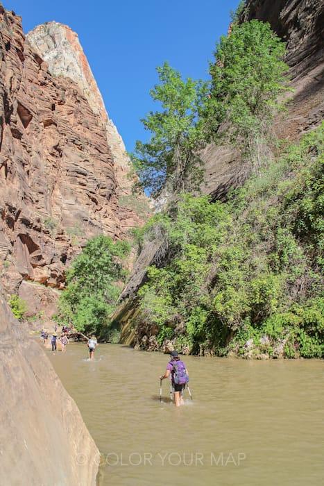 ザイオン国立公園の大人気トレイルThe Narrows(ザ・ナロウズ)は川につかる部分も