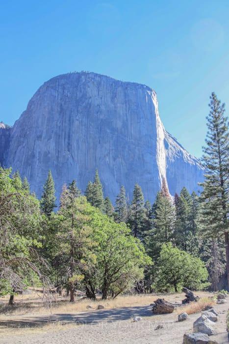 El Capitan(エル・キャピタン)は、ヨセミテ国立公園の西側(サンフランシスコ方面)からYosemite Valley(ヨセミテ渓谷)に入ると、左手側に現れる巨大な一枚岩